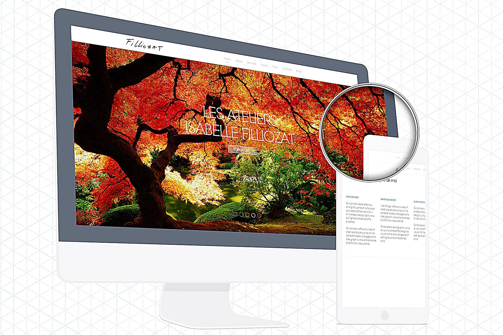 <span>Création web</span>Dr Filliozat